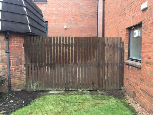 Repaired and re-erected fence from garden